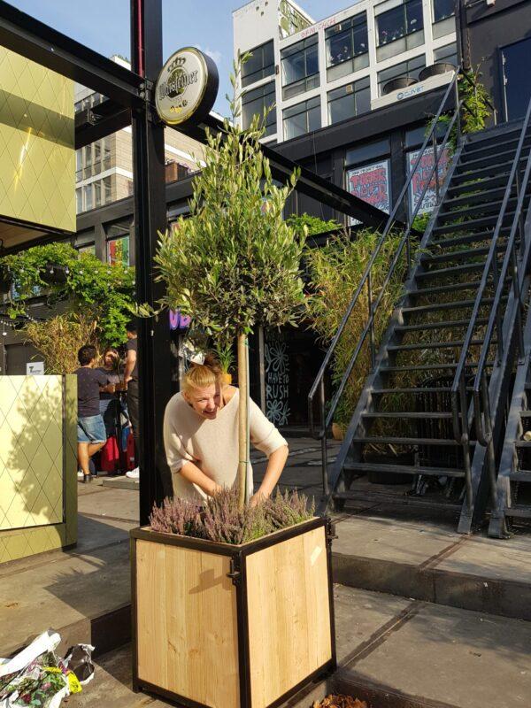 Stalen bloembak boombak Douglas stalen frame terras planten