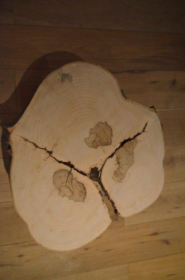 Blad Boomstam salontafel bijzettafel Drie boom stalen frame zwart staal