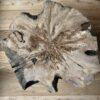 Boomstam boomschijf bijzettafel salontafel Klavertje Vijf zwart frame staal