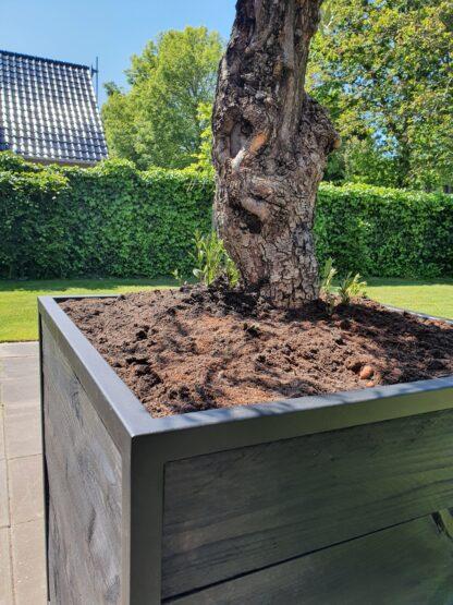 Boombak douglas hout stalen frame zwart staal tuinen zwart structuur olijf