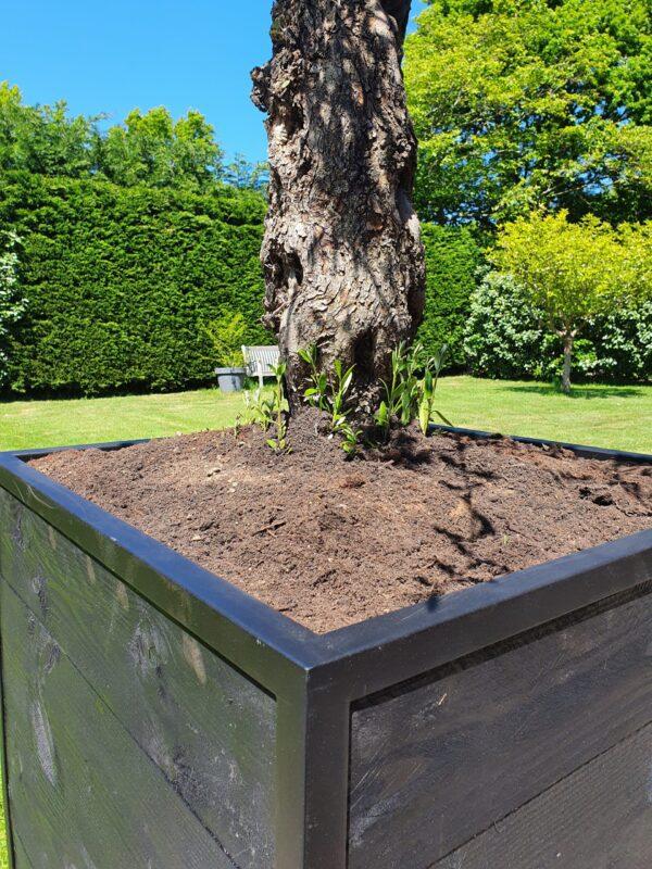 Stalen Boombak plantenbak douglas hout zwart stalen frame tuin terras structuur